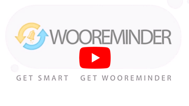 WooReminder - Plug-in de lembrete de pedido de produto para WooCommerce - 3